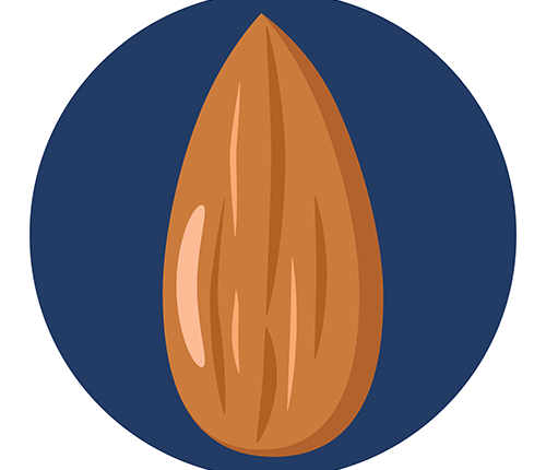 Almond Confirmed